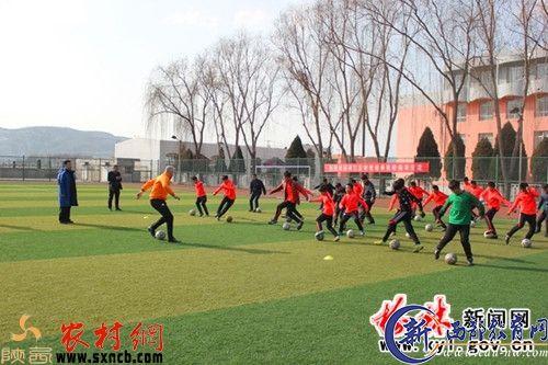 看看荷兰专业足球教练在榆林咋培训的 - 资讯