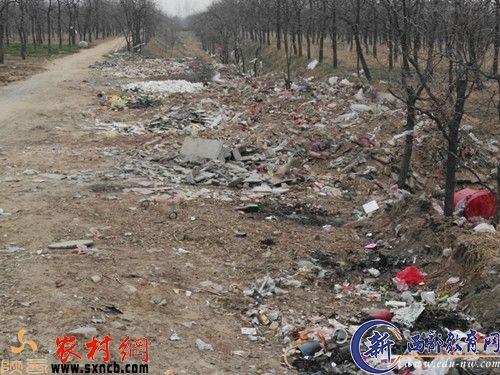 中学遭垃圾围校